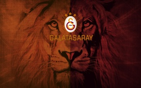Картинка wallpaper, sport, logo, football, Galatasaray SK