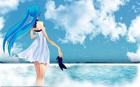 Обои море, птицы, hatsune miku, девушка, туфли, небо, vocaloid
