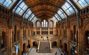 Картинка Англия, Лондон, лестница, ступени, зал, музей естественной истории