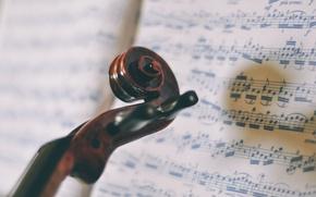 Картинка ноты, музыка, violin