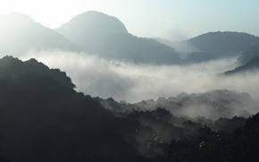 Картинка лес, туман, рассвет, холмы, утро, арт