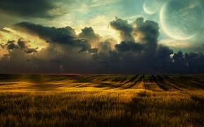 Картинка пшеница, поле, облака, пейзаж, природа, clouds, fields