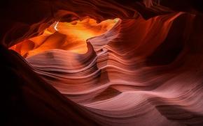 Обои природа, скалы, текстура, каньон, Антилопы