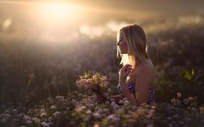 Картинка поле, девушка, солнце, цветы, In Dreams
