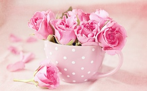 Обои pink, roses, cup, букет, розы, чашка