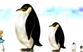 Обои девушка, аниме, пингвины, арт, мороженое, профиль, форма, школьница, milkuro-cat, mari