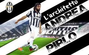 Картинка wallpaper, sport, football, player, Andrea Pirlo, Juventus FC, Juventus Stadium, L'architetto