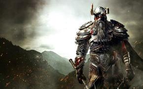 Картинка горы, меч, броня, борода, топор, Викинг, Viking, Древние свитки, The Elder Scrolls Online