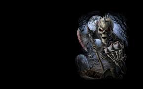 Картинка фон, арт, скелет, кладбище, хоррор, костет