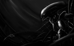 Картинка black and white, pose, silhouette, creature, alien mother