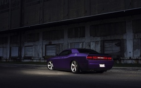 Картинка Muscle, Dodge, SRT8, Challenger, Car, Purple, Rear