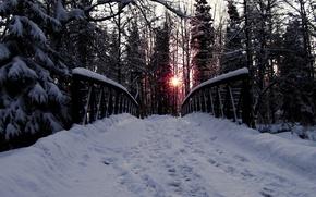 Картинка дорога, лес, деревья, мост, Снег