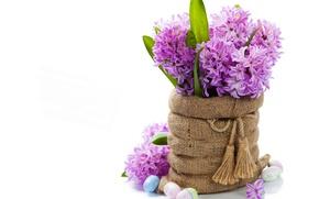 Обои гиацинты, пасха, яйца, цветы, фото