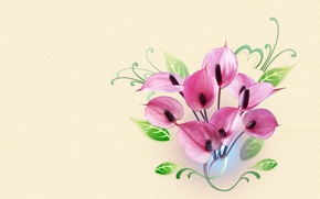 Картинка цветы, минимализм, букет, арт