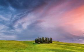 Картинка небо, дерево, поля, Италия, Тоскана