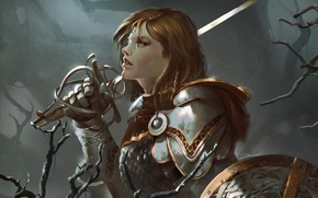 Обои девушка, оружие, меч, щит, доспех, рапира