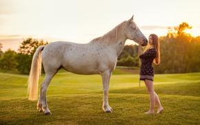 Обои конь, девушка, природа