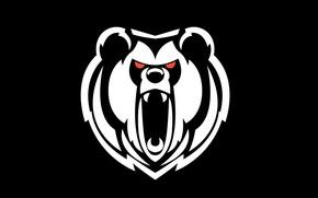 Картинка фон, белое, голова, черное, Медведь, рык