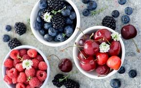 Обои ягоды, малина, Anna Verdina, лето, черешня, ежевика, черника