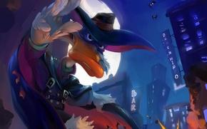 Обои луна, Черный Плащ, летучие мыши, Darkwing Duck, утка, город, взрыв
