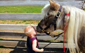 Картинка настроение, мальчик, пони