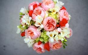 Картинка цветы, букет, пионы, гортензия, композиция, фрезии