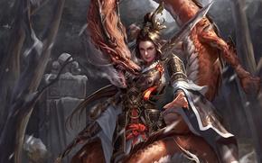 Обои взгляд, девушка, снег, деревья, оружие, дракон, арт, пасть, броня