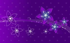Обои линии, цветы, фиолетовая, абстакция
