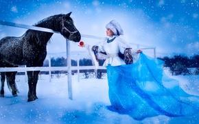 Обои девушка, снег, шапка, лошадь, яблоко, платье, платок