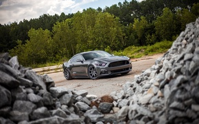 Картинка Mustang, Ford, Stones, 2015, 0.5