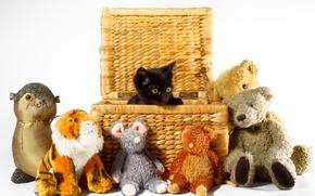 Картинка корзина, игрушки, котёнок, чёрный котёнок