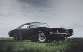 Картинка photography, Dodge Charger, 1968, Roscoe Rutter