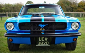 Картинка ретро, Ford Mustang, классика, передок, 1966
