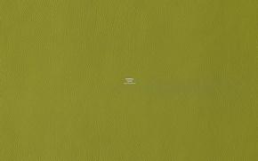 Обои цвет, Hermes, зеленый, текстура, кожа