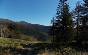 Картинка дорога, лес, небо, трава, сопки, Сахалин