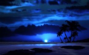 Картинка море, небо, облака, пейзаж, ночь, тропики, пальма, луна, вечер