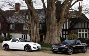 Картинка дом, дерево, две, Mazda