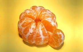 Обои долька мандарина, макро, фрукт, Мандарин