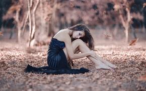 Картинка осень, листья, девушка, ножки, Alessandro Di Cicco, A never ending story