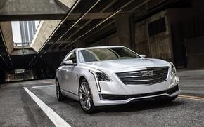 Обои кадиллак, белый, Cadillac, CT6, седан
