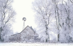 Обои деревья, сарай, Снег, Зима