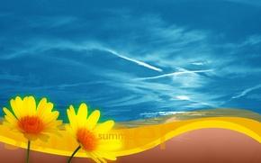 Картинка небо, цветы, Лето