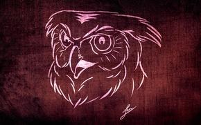 Картинка фон, животное, сова, обои, рисунок, текстура, стилизация, коллекция, филин, скетч, совушка, LBes, ЛБес