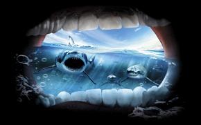 Обои океан, ужас, акулы, крик
