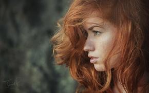 Обои рыжая, Jack Russell, Jenny O Sullivan, лицо, профиль, волосы, girl, photographer, девушка, model, модель