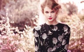 Обои цветы, Teen Vogue, сад, актриса, певица, Daniel Jackson, прическа, боке, макияж, Taylor Swift, очки, фотосессия, ...