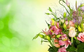Картинка фон, розы, букет, бутоны, эустома