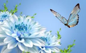 Картинка цветы, лепестки, коллаж, бабочка