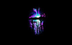 Картинка деревья, ночь, краски, северное сияние, вороны