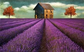 Картинка цветы, дом, стиль, фон
